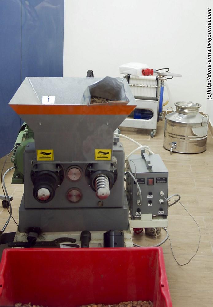 IMGP8051a-a