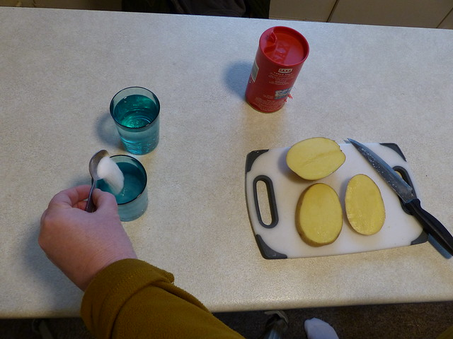 Potato osmosis activity from chapter 6 of Messy Church Does Science