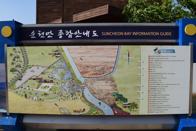 Suncheon Bay Wetland (4)