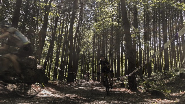 白州の森バイクロア3