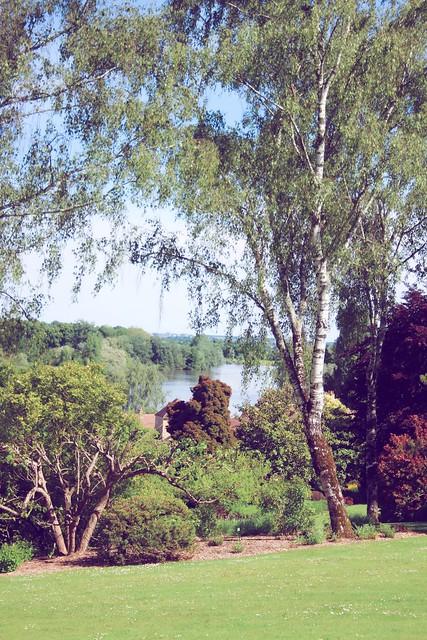 Jardin floral d'Apremont sur Allier (27)