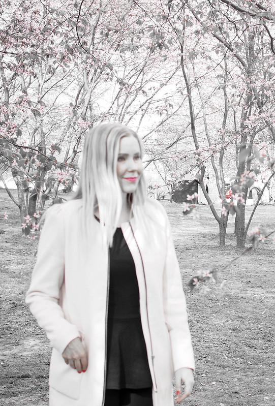 CherryParkCherryBlossomLightpinkGrayPhotosP5206984.jpg,P5206932.jpgLightPinkCherryTreesHelsinkiCherryBlossom, cherry blossom, cherry tree bloom, kirsikkapuut, kirsikkapuisto, suomi, finland, helsinki, roihuvuori, kevät, toukokuu, may, spring, photography, valokuvaus, photos, harmaa, gray, light pink, vaaleanpunainen, olympus, camera, kamera, cherry park, flowers, kukat, maisema, view, kirsikankukat, cherry flowers, kirsikkapuut,
