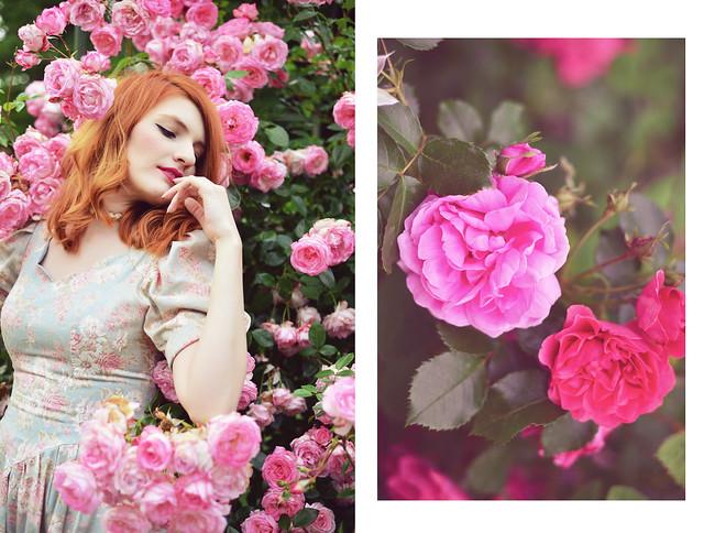 Rose_Garden (7)