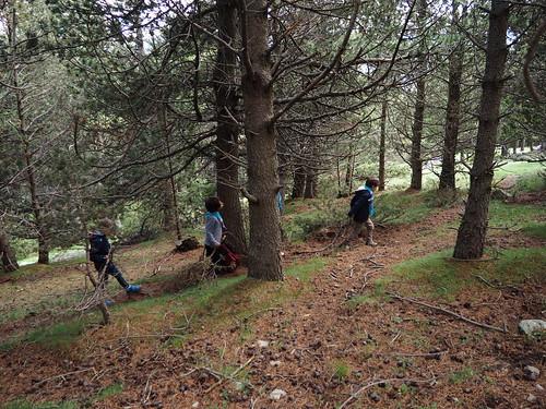 Excursió d'esquirols