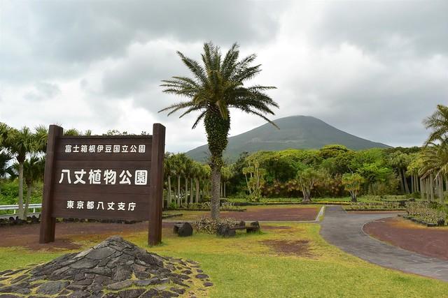 八丈島・八丈植物公園