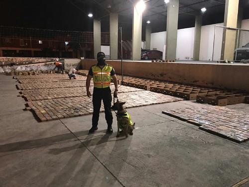 Duro golpe a las arcas del narcotráfico con el decomiso de 2,5 toneladas de cocaína, en Guayaquil