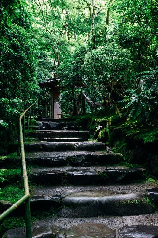 Kyoto_Rurikoin_07