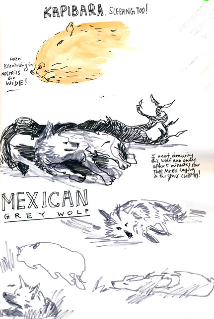 Sketchbook #104: Visit to the Zoo