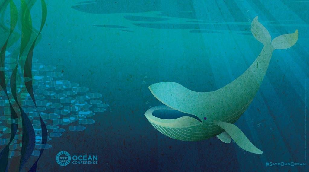 聯合國海洋研討會海報。