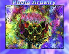 Photo Artistry Group