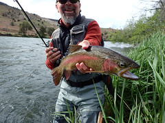 Deschutes Redband dry fly magic