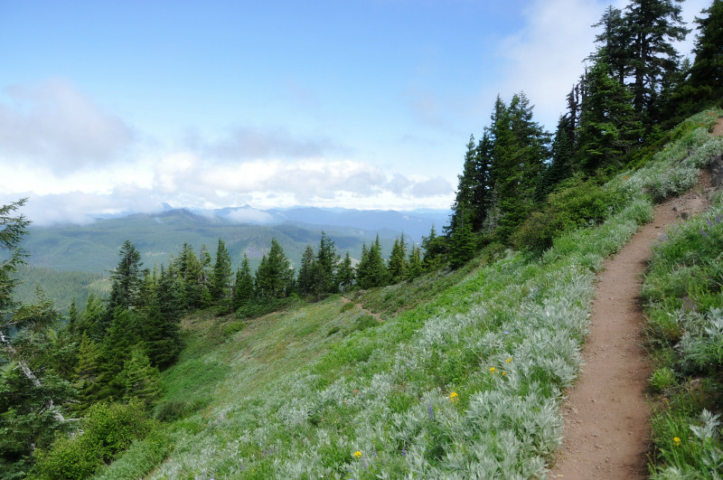 Iron Mountain Hike Even Higher @ Mt. Hope Chronicles