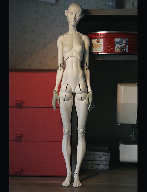New doll model