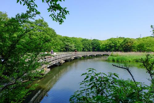 2017.05.14 山田池公園