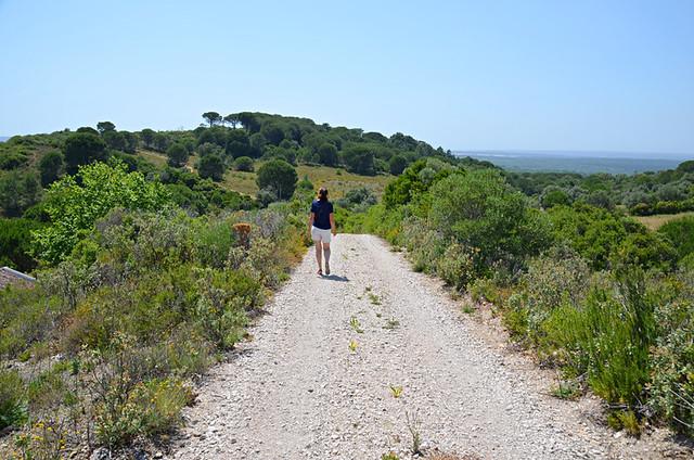 Walking to Azeitao, Portugal
