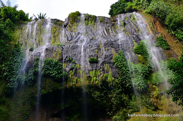 halfwhiteboy - hulugan falls, luisiana, laguna 01