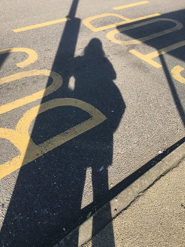 Self Portrait with Bus Stop