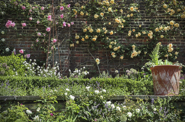 Fenton House Garden, Hampstead