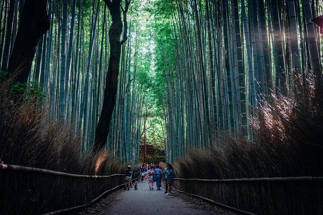 Kyoto_Arashiyama_50