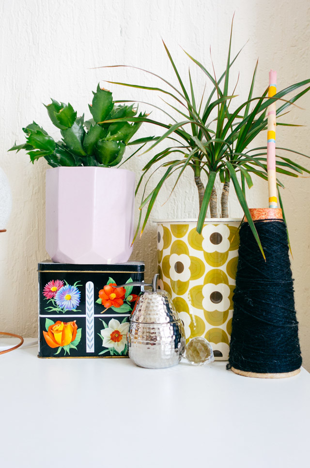 plants and vintage homewares