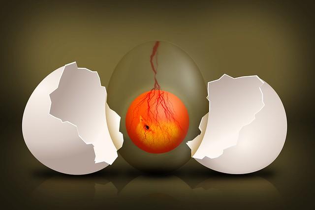 Egg Vigyaan