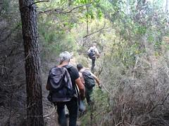 Retour sur le chemin entre le ravin de Figa et les vasques du Finicione
