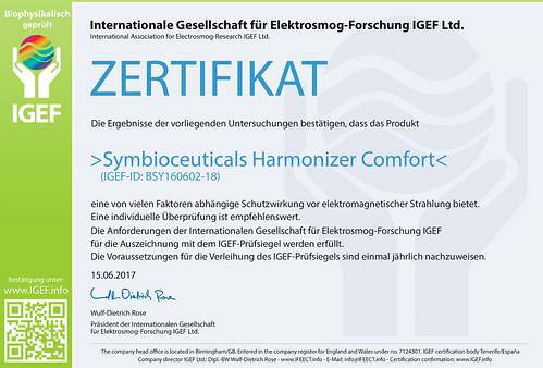 IGEF-Zertifikat-BSY-DE-17