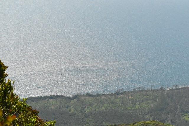 開聞岳から望む煌びやかな海