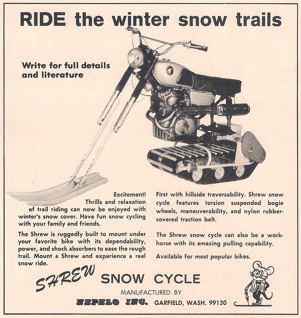Shrew Snow Cycle