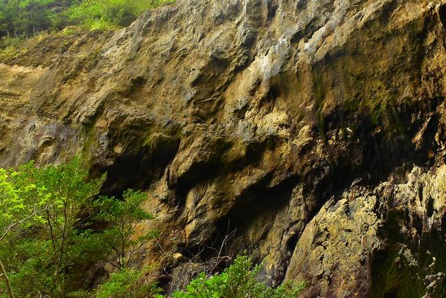 八丈島 唐滝の岩壁