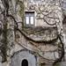 Villa Rufolo, with built-in dog house, Ravello, Italy