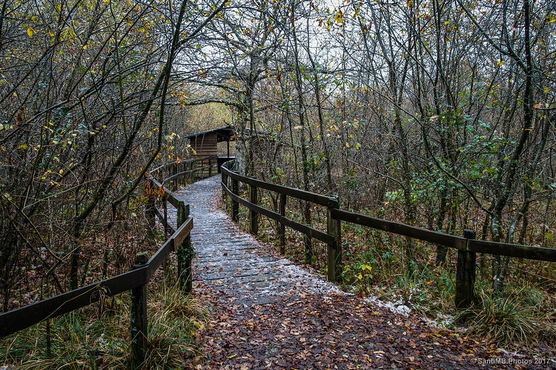 Observatorio de aves y anfibios del Bosque de Orgi