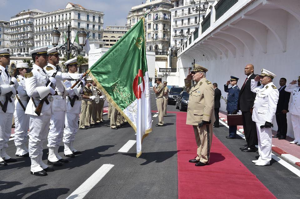 Armée Algérienne (ANP) - Tome XIV 34700595522_bc767f2afe_o