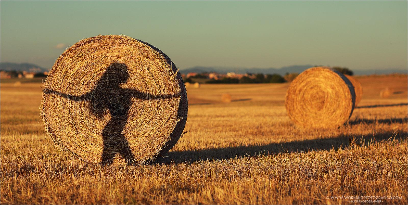 Обзор фликра - Massimiliano Uccelletti