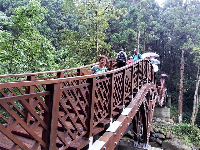 溪頭新建的銀杏橋 (2)
