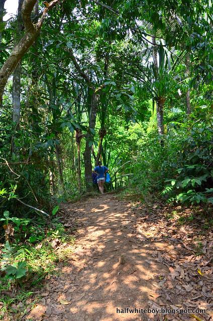 halfwhiteboy - talay falls, hidden falls, luisiana, laguna 08
