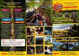 Maesa Elephant Camp Chiang Mai Thailand Brochure 1