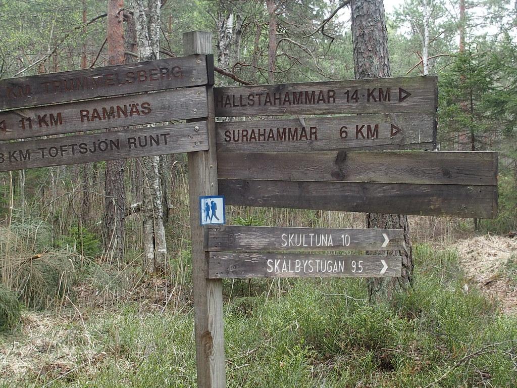 Vilken väg är bäst?