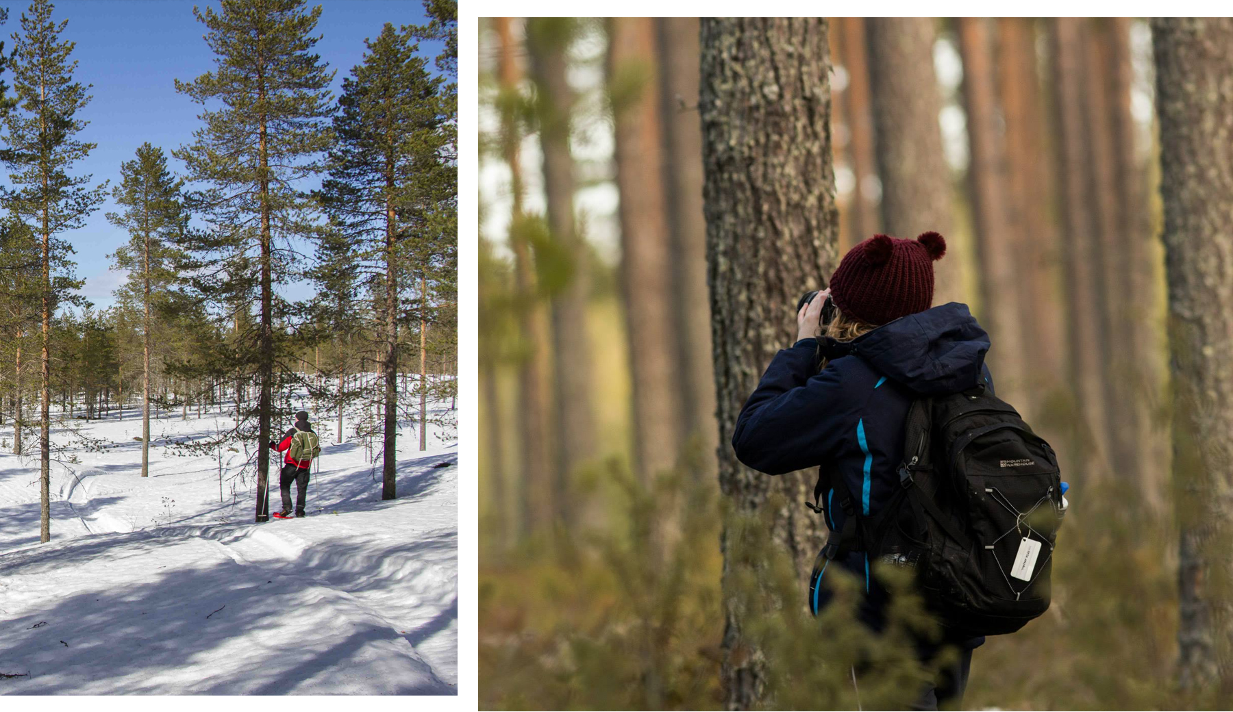 5 Reasons To Go On A Walking Holiday | Finland | lifeofkitty.co.uk