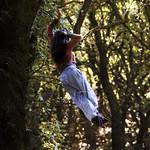 Tree acrobatics - take 8