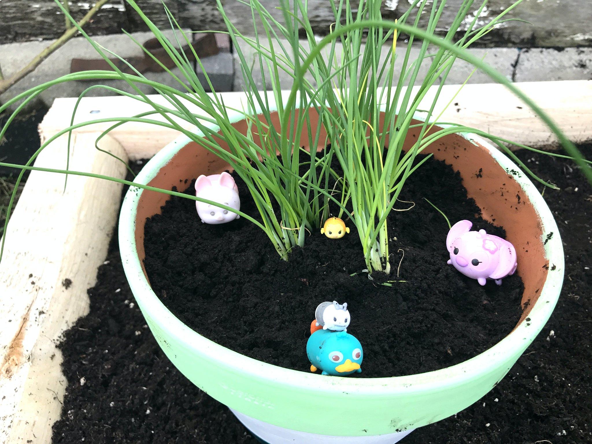 Tsum Tsums Gardening 1