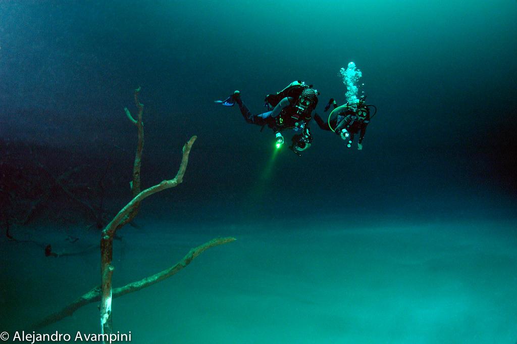Cenote Profundo en la Riviera Maya Mexico