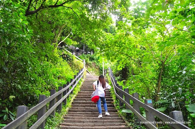 Hiking at Elephant Mountain Taipei