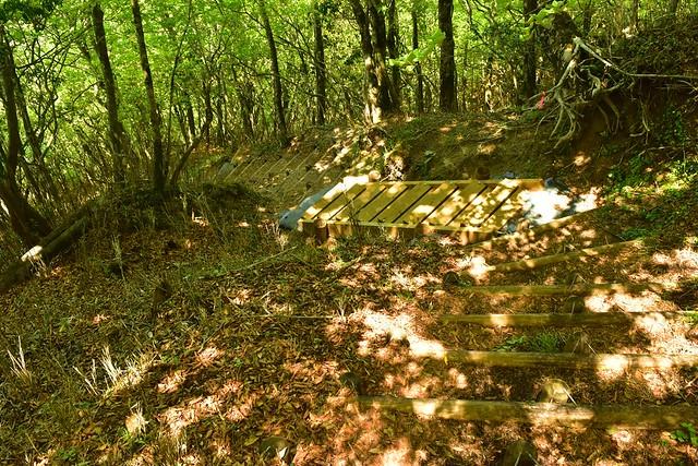 畦ヶ丸 急な階段