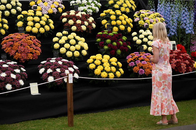 Dancing Pandas, Walking Trees and UK Royals at the 2017 Chelsea Flower Show
