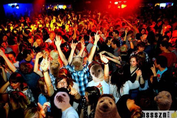 clubbing-seals_620_413