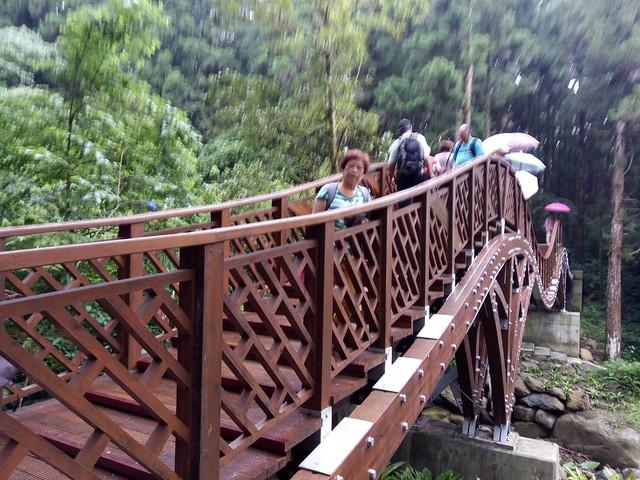 溪頭新建的銀杏橋 (14)
