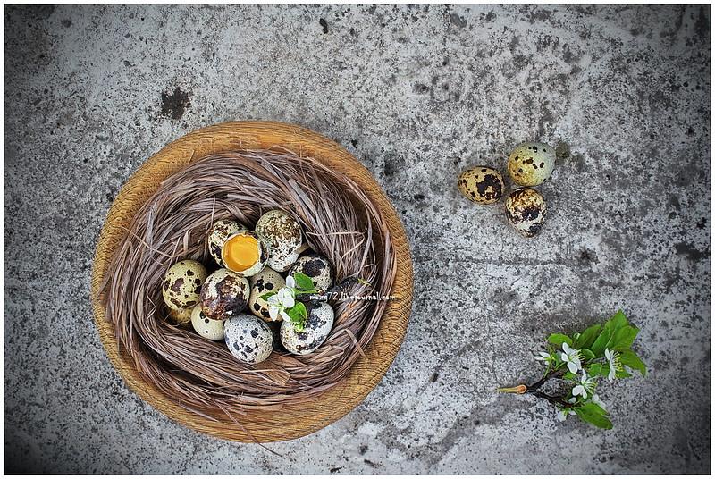 ...quail eggs
