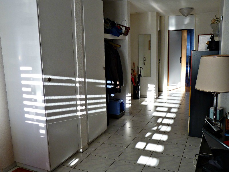 shadows,
