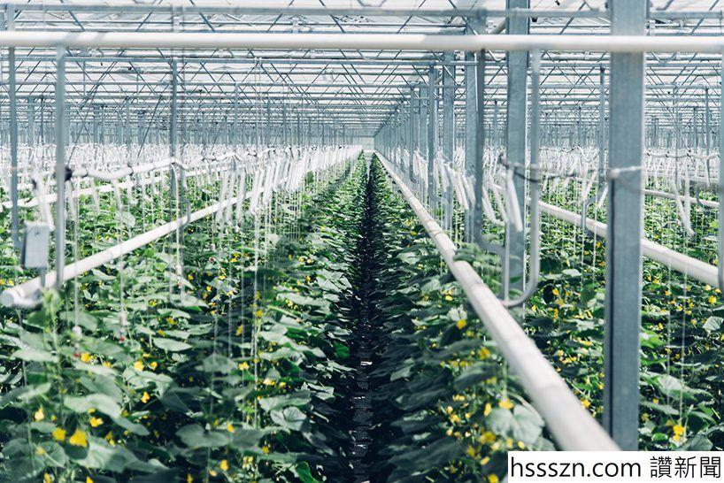 climeworkds-direct-air-capture-plant-zurich-designboom-06-01-2017-818-003-818x546_818_546